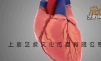 北京动画制作心脏跳动手术